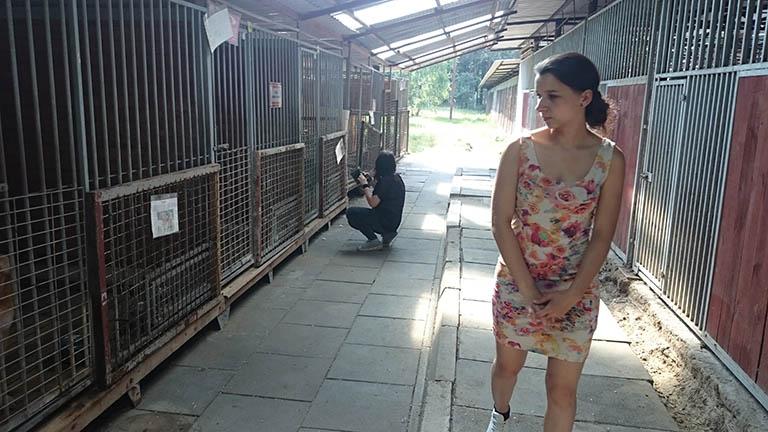Schronisko dla bezdomnych zwierząt